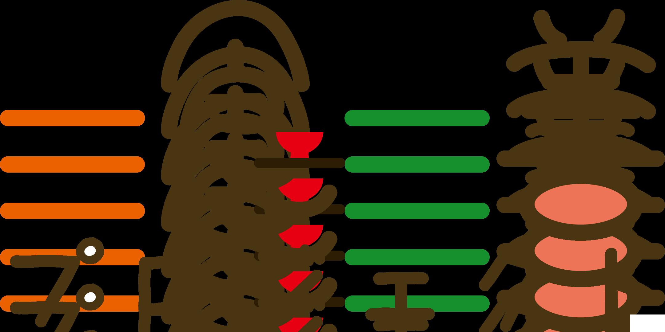 一食一善プロジェクト ロゴ