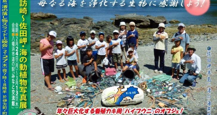 諏訪崎?佐田岬・海の動植物写真展 開催のお知らせ